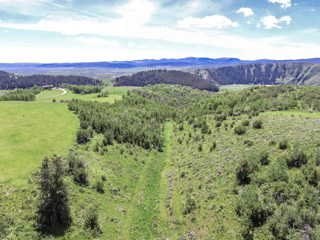 LOT 4 Staghorn Drive, Thayne, WY 83127 (MLS #20-2818) :: West Group Real Estate