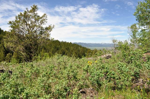 5170 Meandering Moose, Victor, ID 83455 (MLS #20-436) :: West Group Real Estate