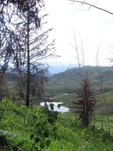 TBD Mountain View Drive, Bondurant, WY 82922 (MLS #20-680) :: Sage Realty Group