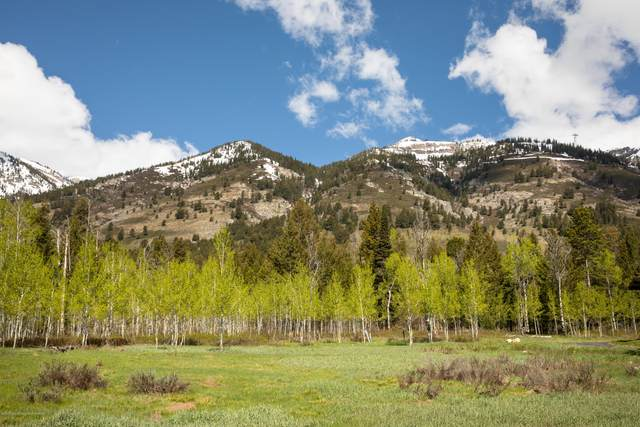3635 Coyote Creek, Teton Village, WY 83025 (MLS #20-917) :: The Group Real Estate