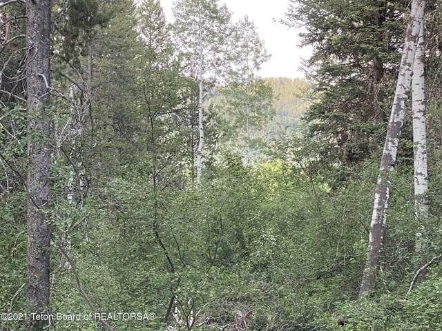 LOT 20 Alpine Meadow Loop, Alpine, WY 83128 (MLS #21-1081) :: Coldwell Banker Mountain Properties