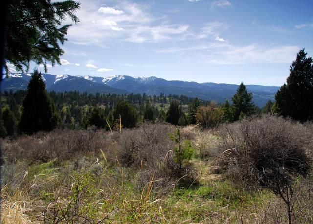 LOT52B4 Cutthroat Run, Irwin, ID 83428 (MLS #21-115) :: Coldwell Banker Mountain Properties