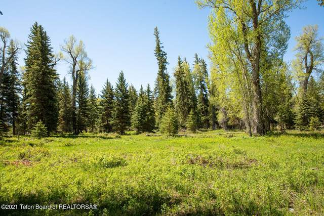 450 E Death Canyon Road, Jackson, WY 83001 (MLS #21-2404) :: Coldwell Banker Mountain Properties