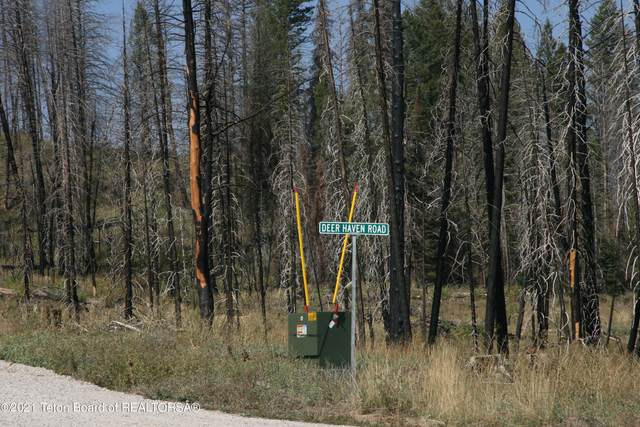 44 Deer Haven Rd, Bondurant, WY 82922 (MLS #21-3323) :: Coldwell Banker Mountain Properties