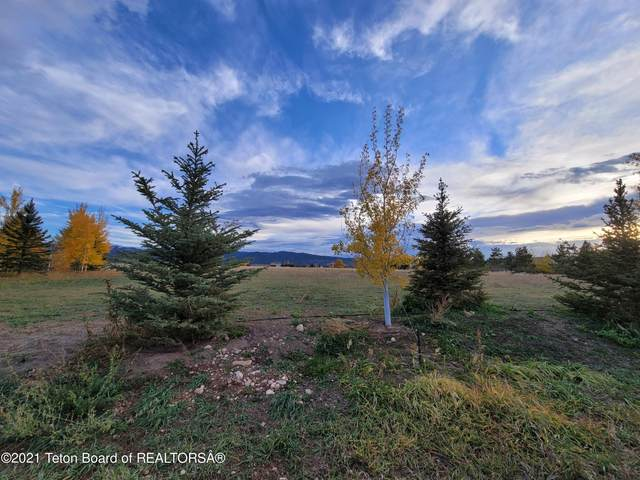 1319 W 7000 S, Victor, ID 83455 (MLS #21-3654) :: Coldwell Banker Mountain Properties