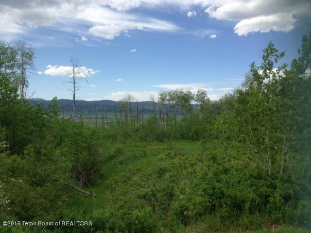 LOT 32 Roberts Rd, Etna, WY 83118 (MLS #15-657) :: Sage Realty Group