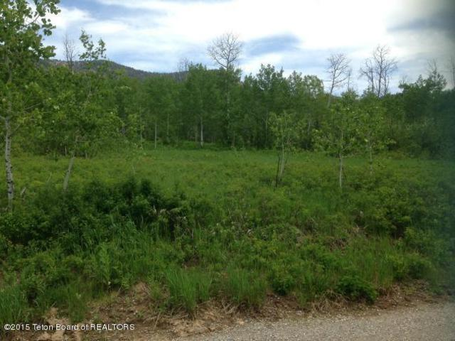 LOT 33 Roberts Rd, Etna, WY 83118 (MLS #15-658) :: Sage Realty Group