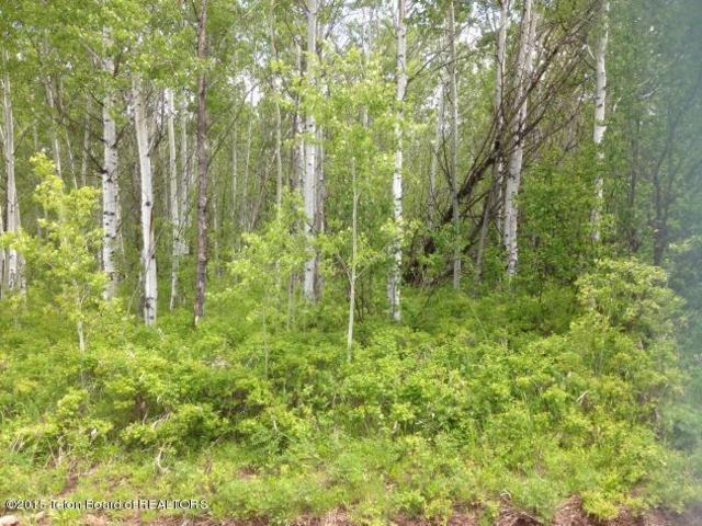 LOT 34 Roberts Rd, Etna, WY 83118 (MLS #15-659) :: Sage Realty Group