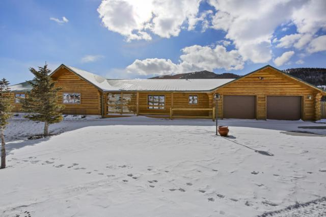172 Soda Springs Dr, Dubois, WY 82513 (MLS #18-184) :: Sage Realty Group