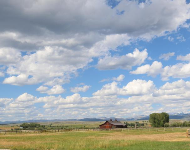 156 Old Brazzill Ranch Rd, Pinedale, WY 82941 (MLS #19-2346) :: West Group Real Estate