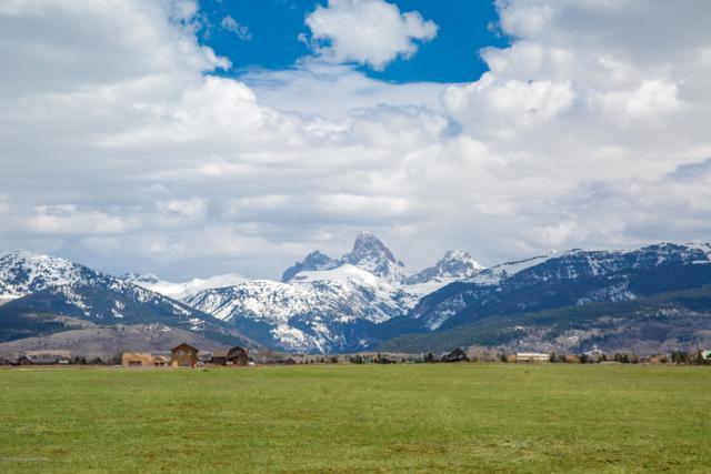 473 Treasure Mountain Loop, Driggs, ID 83422 (MLS #19-568) :: West Group Real Estate