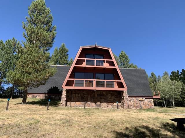 755 E E. Alta Road, Alta, WY 83414 (MLS #20-2555) :: West Group Real Estate