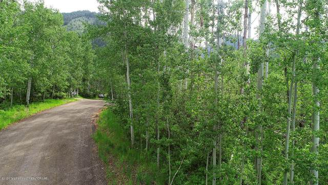 PLAT 6 Lot 51 Walnut Dr, Star Valley Ranch, WY 83127 (MLS #20-2982) :: Sage Realty Group