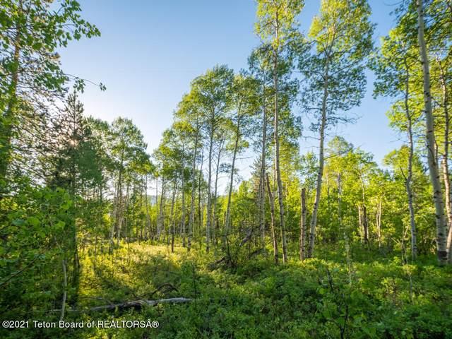 355 N Meadowlark Road, Jackson, WY 83001 (MLS #20-3698) :: Coldwell Banker Mountain Properties