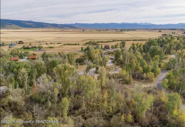 225 Cloudveil Ct, Driggs, ID 83442 (MLS #21-451) :: Coldwell Banker Mountain Properties
