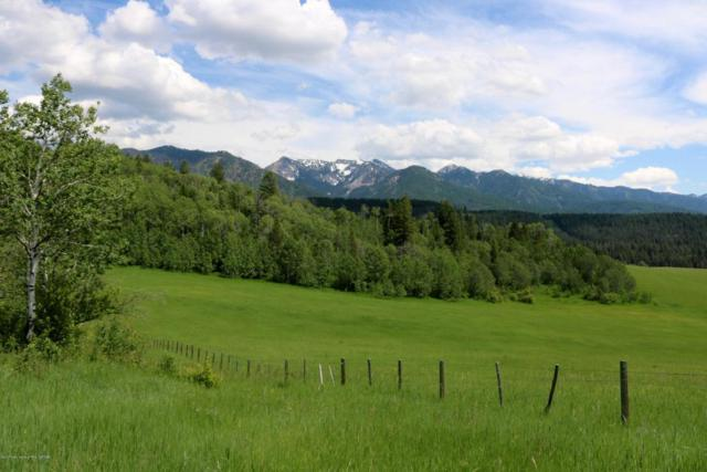 Lot 10 Trail Ridge Rd, Alpine, WY 83128 (MLS #17-1768) :: West Group Real Estate