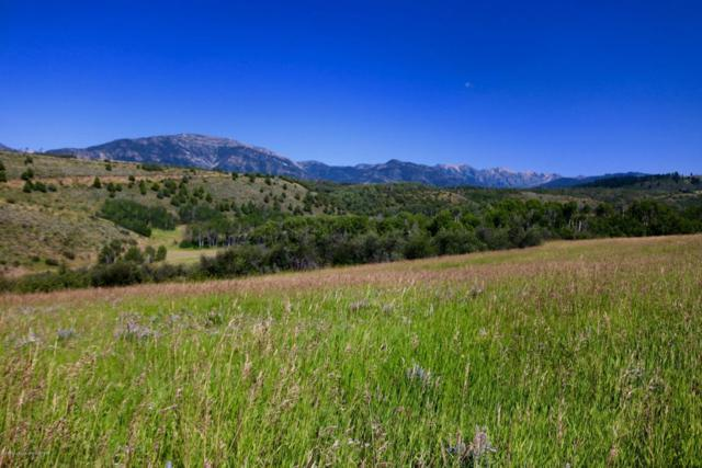 Strawberry Hills Drive, Bedford, WY 83112 (MLS #17-2202) :: Sage Realty Group