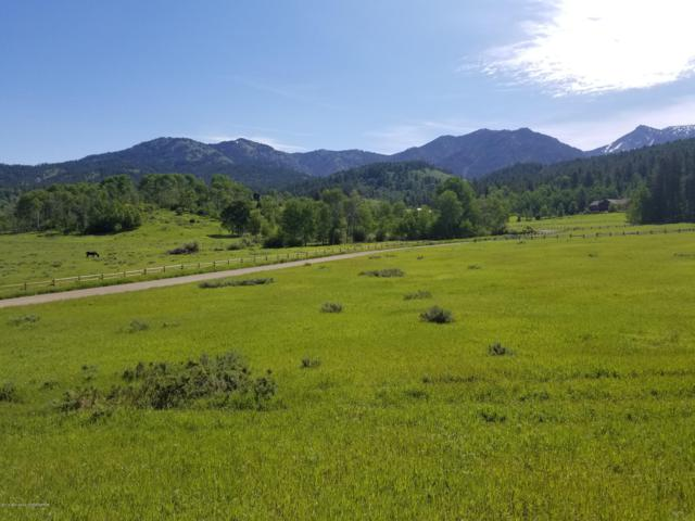 LOT 6 Dell Creek, Alpine, WY 83128 (MLS #19-794) :: West Group Real Estate