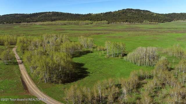 LOT 8 Munrow Meadows, Wayan, ID 83285 (MLS #21-1182) :: Coldwell Banker Mountain Properties