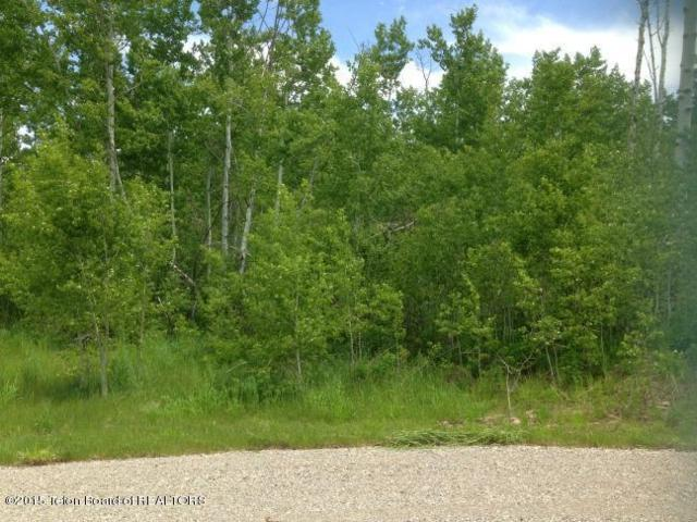 LOT 41 Roberts Rd, Etna, WY 83118 (MLS #15-661) :: Sage Realty Group