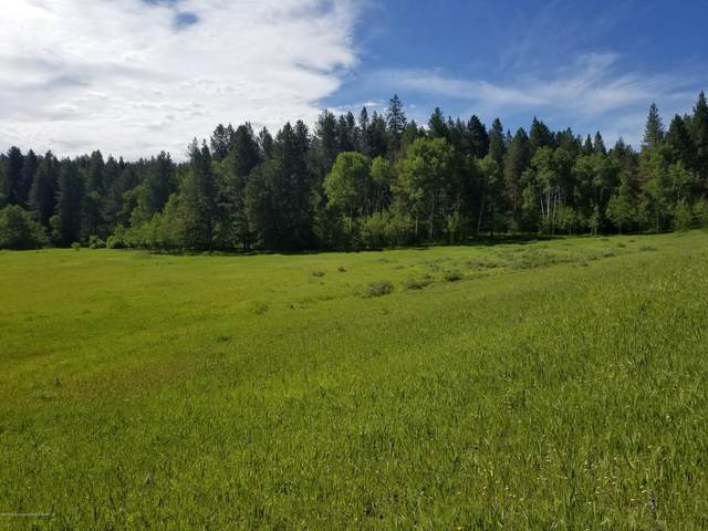 LOT 6 Dell Creek, Alpine, WY 83128 (MLS #19-794) :: Sage Realty Group