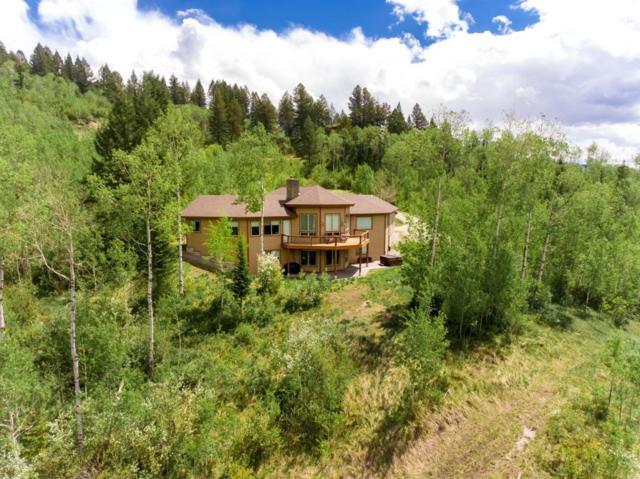 60 Dancer Circle, Alpine, WY 83128 (MLS #18-406) :: West Group Real Estate