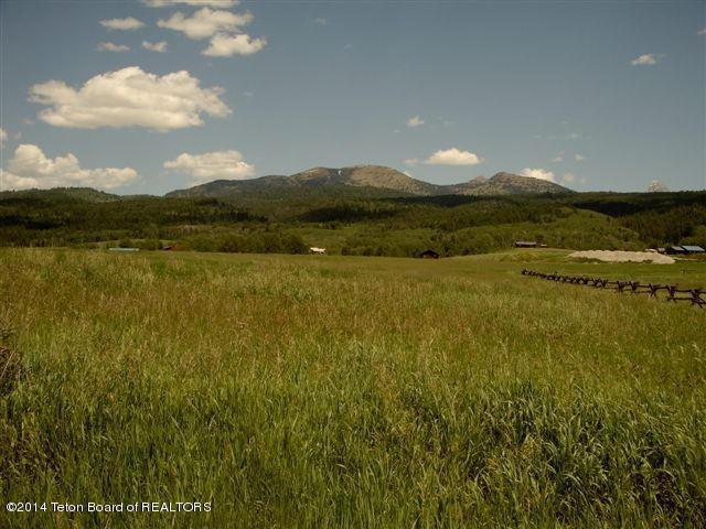 120 E Lochan Fen, Alta, WY 83414 (MLS #14-358) :: West Group Real Estate