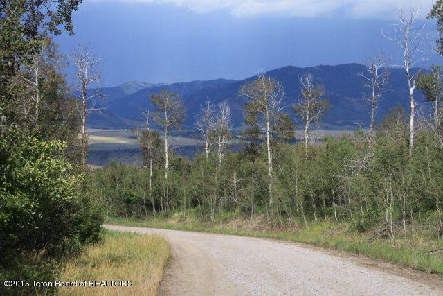 TBD Wagon Road, Swan Valley, ID 83428 (MLS #15-2528) :: West Group Real Estate