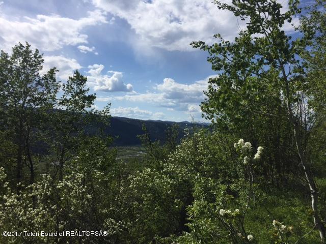 LOT 6 Hillside Loop, Thayne, WY 83127 (MLS #17-1598) :: West Group Real Estate