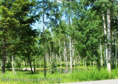 5 Blackfoot Trl, Victor, ID 83455 (MLS #17-2091) :: Sage Realty Group