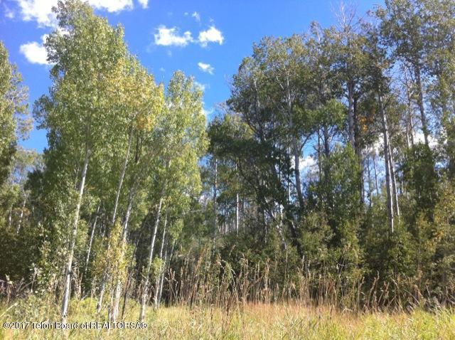 6259 N Leigh Creek Rd, Tetonia, ID 83452 (MLS #17-2178) :: Sage Realty Group