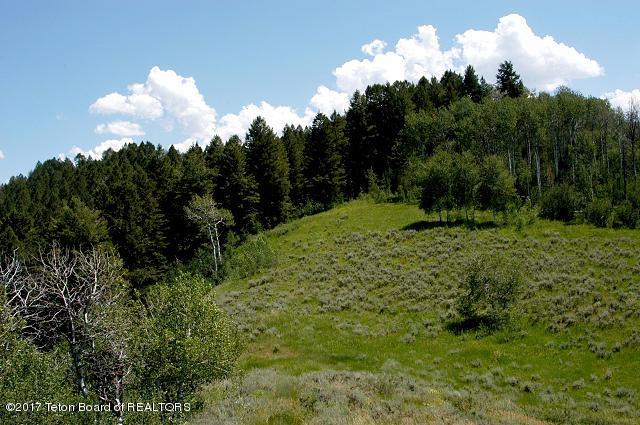 LOT 10 Co. Rd. 128, Bedford, WY 83112 (MLS #17-695) :: West Group Real Estate