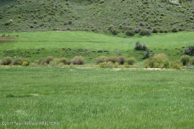 Lot 3 Willow Creek, Thayne, WY 83127 (MLS #17-740) :: West Group Real Estate
