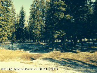 455 E Buck Mountain Rd, Jackson, WY 83001 (MLS #17-988) :: Sage Realty Group