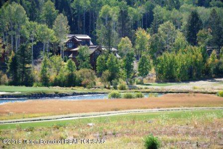 41 Blackfoot Trl, Victor, ID 83455 (MLS #18-1666) :: Sage Realty Group