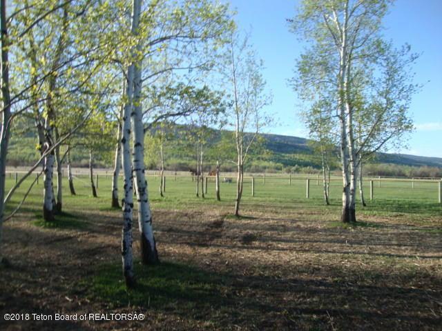 780 Spring Creek Rd, Alta, WY 83414 (MLS #18-2448) :: Sage Realty Group