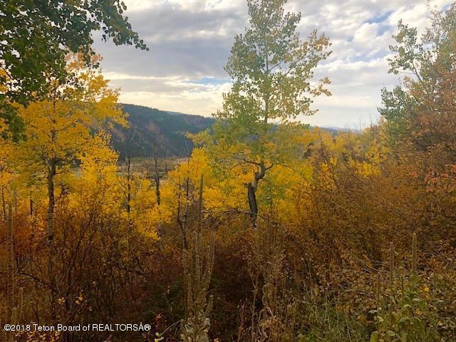 LOT 6 Hillside Loop, Thayne, WY 83127 (MLS #18-2865) :: Sage Realty Group