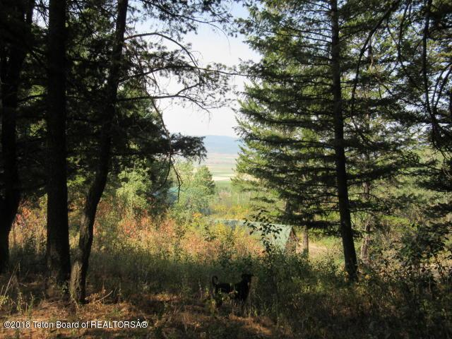 64 Alpenglow Dr., Star Valley Ranch, WY 83127 (MLS #18-3204) :: West Group Real Estate
