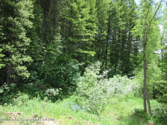 LOT 2 Sunrise Mountain Place, Star Valley Ranch, WY 83127 (MLS #18-3260) :: Sage Realty Group