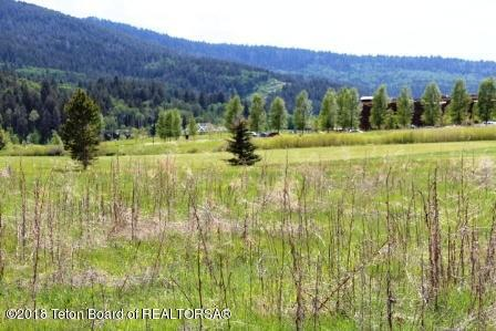 44 Rammell Rd, Victor, ID 83455 (MLS #18-650) :: Sage Realty Group