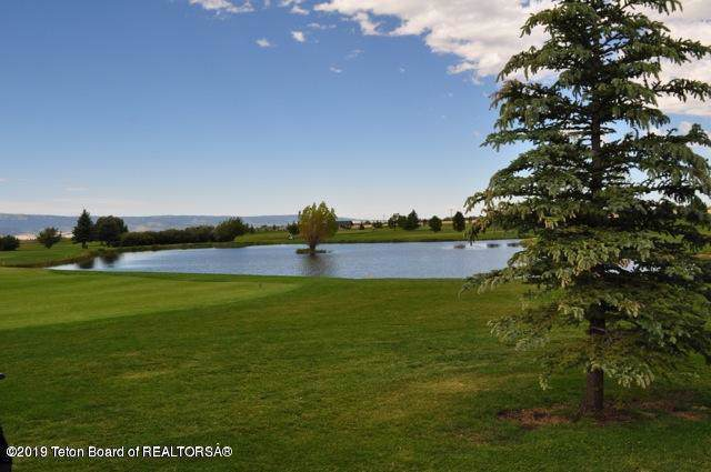 140 Perimeter Drive, Alta, WY 83414 (MLS #19-2728) :: Sage Realty Group