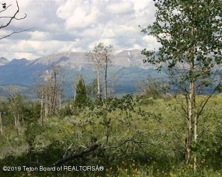 TBD Aspen Drive, Bondurant, WY 82922 (MLS #19-42) :: Sage Realty Group