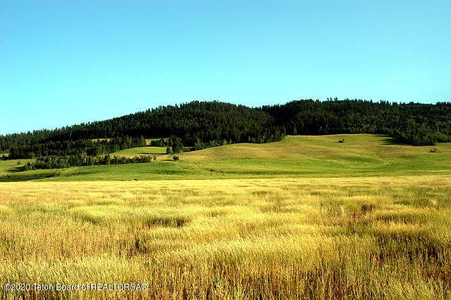 TBD Co. Rd. 123, Bedford, WY 83112 (MLS #20-2871) :: Sage Realty Group