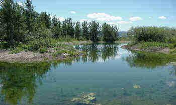 6388 Fox Springs L14 Drive, Victor, ID 83455 (MLS #20-3208) :: Sage Realty Group