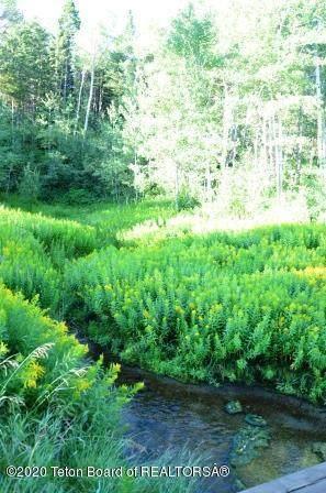 9 Blackfoot Trl, Victor, ID 83455 (MLS #20-3550) :: Sage Realty Group