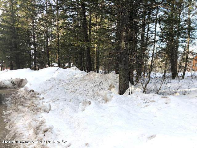 LOT 105 Plat 7 Svr, Star Valley Ranch, WY 83127 (MLS #20-515) :: Sage Realty Group