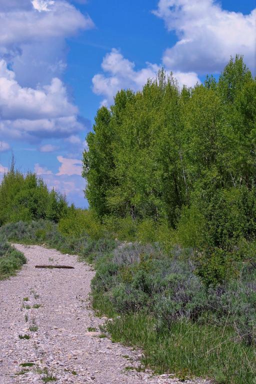 9270 Timberline Loop, Victor, ID 83455 (MLS #16-1290) :: Sage Realty Group