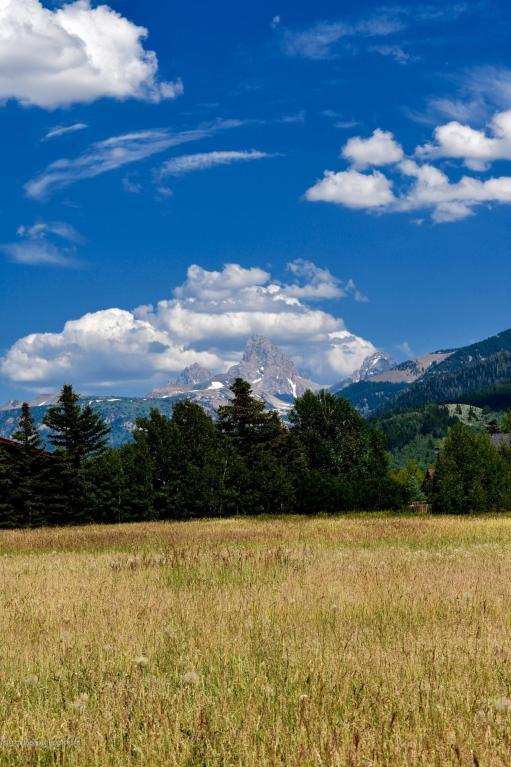 Address Not Published, Alta, WY 83414 (MLS #17-2024) :: Sage Realty Group
