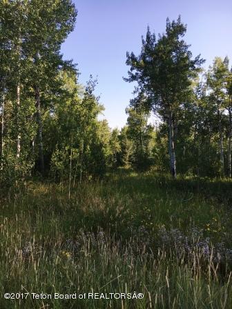 8 Blackfoot Trl, Victor, ID 83455 (MLS #17-2586) :: Sage Realty Group