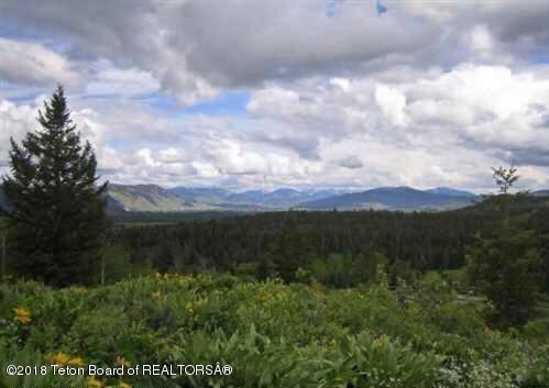 1500 N Moosebrush Drive, Wilson, WY 83014 (MLS #18-767) :: Sage Realty Group